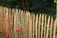 Stakete gespalten 120 cm geschält einseitig angespitzt Kastanienholz französische Kastanie