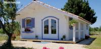 Premium Gartenhaus Michelle