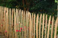 Stakete gespalten 150 cm geschält einseitig angespitzt Kastanienholz französische Kastanie