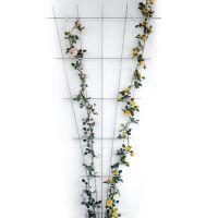 Bellissa 92360 Rosen-Spalier Fächer zink-rip 150 x 75 cm, Rankgitter, feuerverzinkt von Gartenwelt R