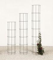 Regenrinnenspalier Laurin H120 cm (11248)